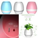 Bluetooth Music Flowerpot/Speaker(Without Plants)