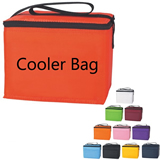 Large Zippered Insulated Picnic Cooler Bag